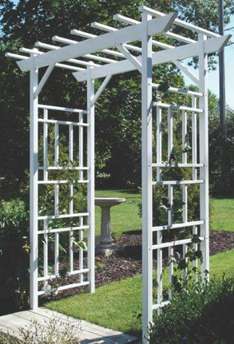 A white garden pergola style arbor supports climbing plants